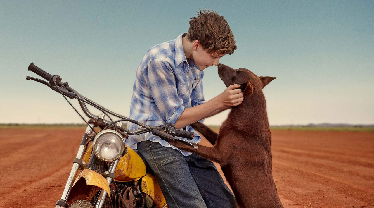 red-dog-true-blue-review